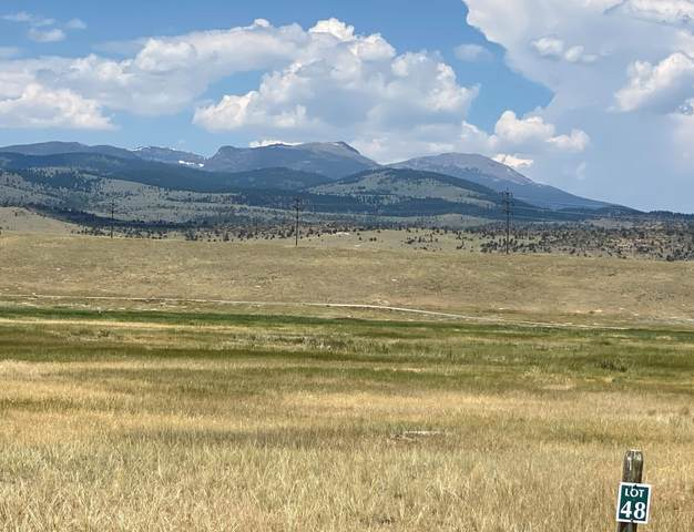 Lot 48 Sky View, Ennis, MT 59729 (MLS #22110759) :: Andy O Realty Group