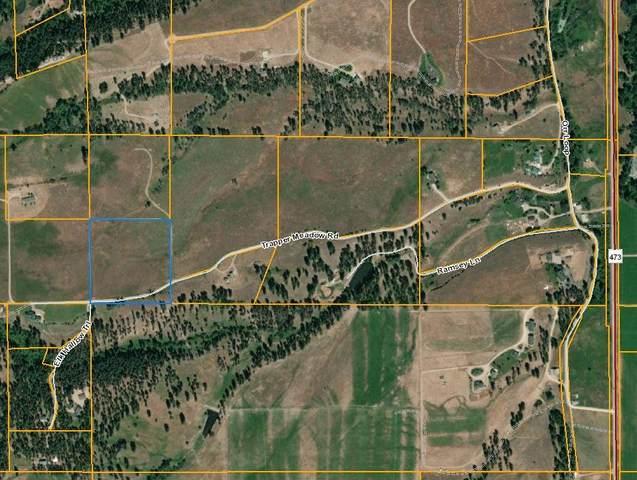 236 Trapper Meadow Road, Darby, MT 59829 (MLS #22110784) :: Dahlquist Realtors