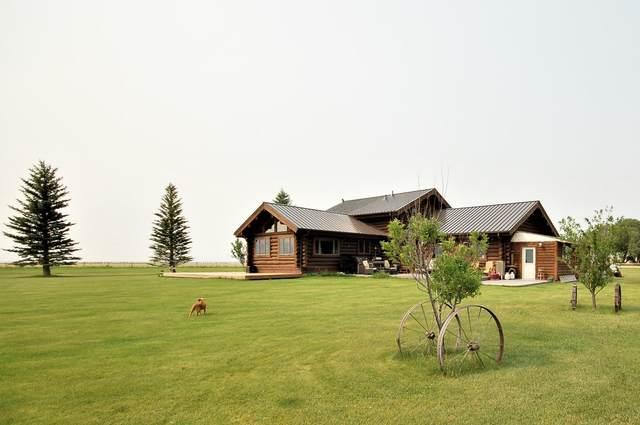 3 Dolly Varden Drive, Ennis, MT 59729 (MLS #22110820) :: Montana Life Real Estate