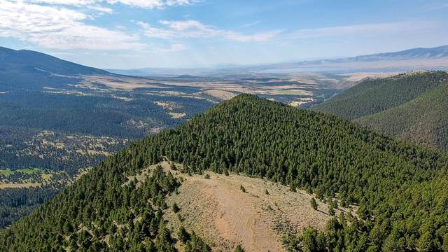 Tbd Confederate Gulch Road, Townsend, MT 59644 (MLS #22110924) :: Andy O Realty Group