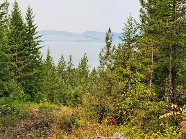 Nhn East Bay Lane, Polson, MT 59860 (MLS #22111291) :: Montana Life Real Estate
