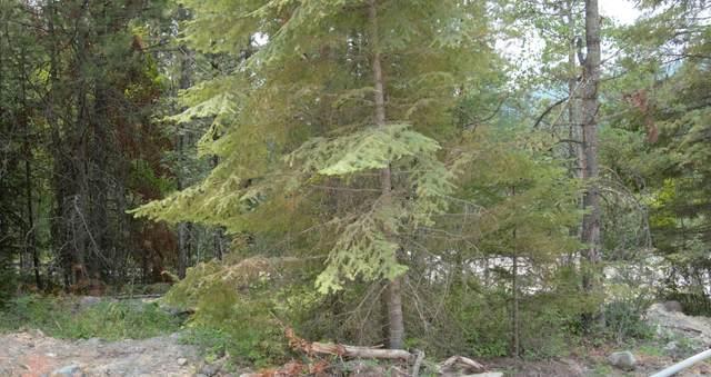 Nhn Bear Paw Court, Whitefish, MT 59937 (MLS #22111316) :: Peak Property Advisors