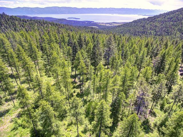 Nkn Peach Park Loop, Rollins, MT 59931 (MLS #22111367) :: Whitefish Escapes Realty