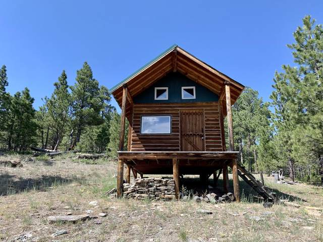 3173 Allen Gulch Road, Wolf Creek, MT 59648 (MLS #22111508) :: Andy O Realty Group