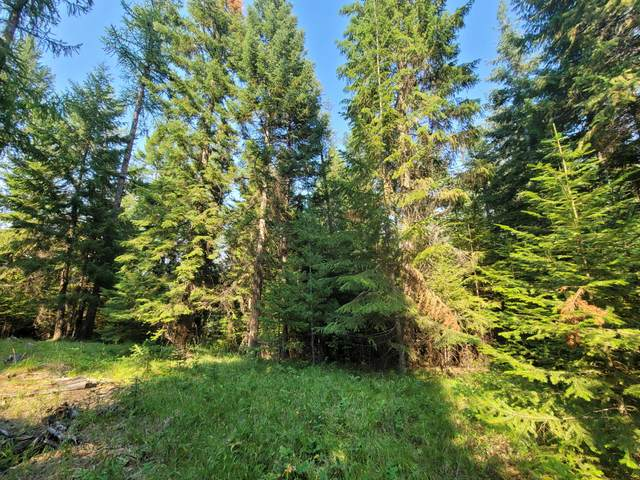 Nhn Upper Flower Creek Road, Libby, MT 59923 (MLS #22111581) :: Montana Life Real Estate