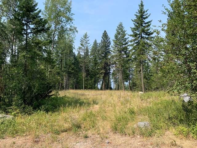 663 Pommel Drive, Bigfork, MT 59911 (MLS #22111793) :: Montana Life Real Estate