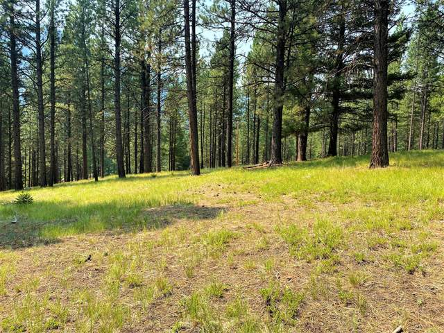 Ukn Lapwai Lane, Darby, MT 59829 (MLS #22111796) :: Whitefish Escapes Realty