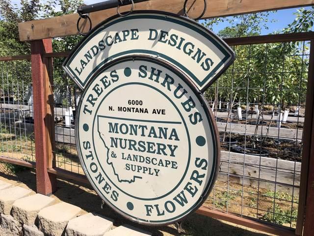 6000 N Montana Avenue, Helena, MT 59602 (MLS #22111824) :: Peak Property Advisors