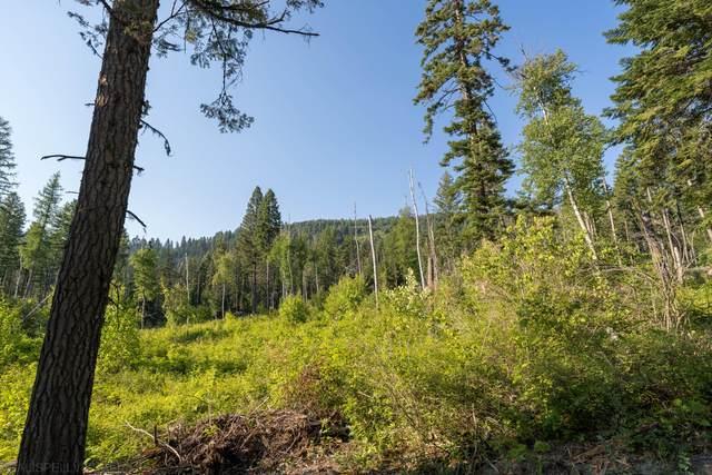 Nhn Mt Hwy 83, Bigfork, MT 59911 (MLS #22111867) :: Whitefish Escapes Realty