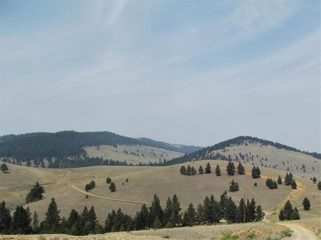 7100 Skelly Gulch Road, Helena, MT 59602 (MLS #22111884) :: Andy O Realty Group
