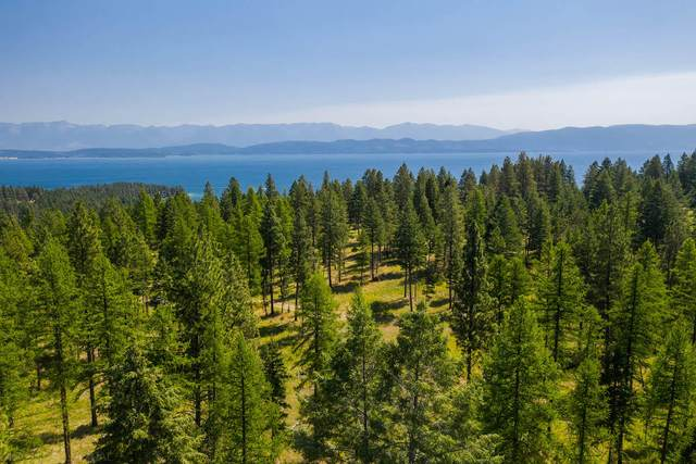 6890 Nhn Us Hwy 93, Lakeside, MT 59922 (MLS #22112005) :: Whitefish Escapes Realty