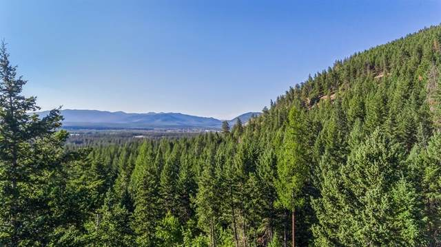 1216 Hems Road, Columbia Falls, MT 59912 (MLS #22112012) :: Whitefish Escapes Realty