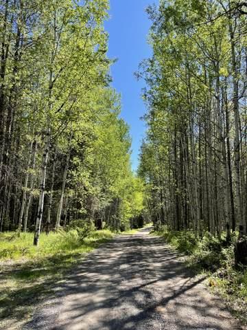 200 Wollan Way, Whitefish, MT 59937 (MLS #22112073) :: Peak Property Advisors