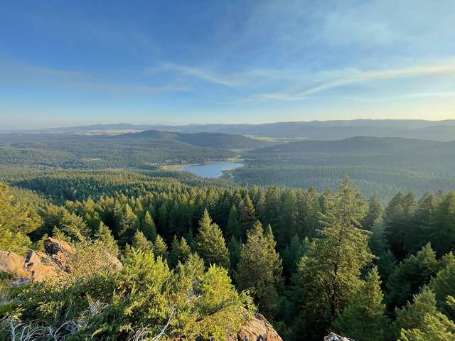 2423 Wolf Tail Pines Road, Whitefish, MT 59937 (MLS #22112087) :: Whitefish Escapes Realty