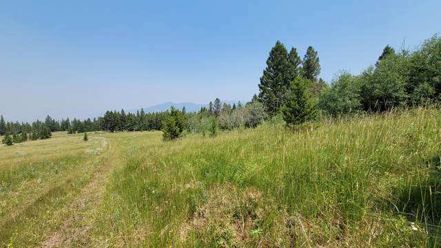 Tbd Tract 6 Wineglass Grazing, Helmville, MT 59843 (MLS #22112126) :: Andy O Realty Group
