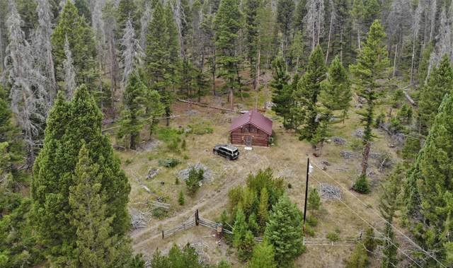 12088 Lincoln Road W, Helena, MT 59602 (MLS #22112214) :: Andy O Realty Group
