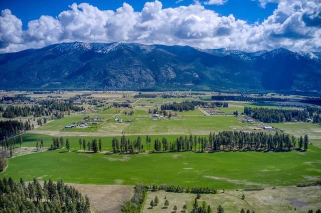 Columbia Falls, MT 59912 :: Andy O Realty Group