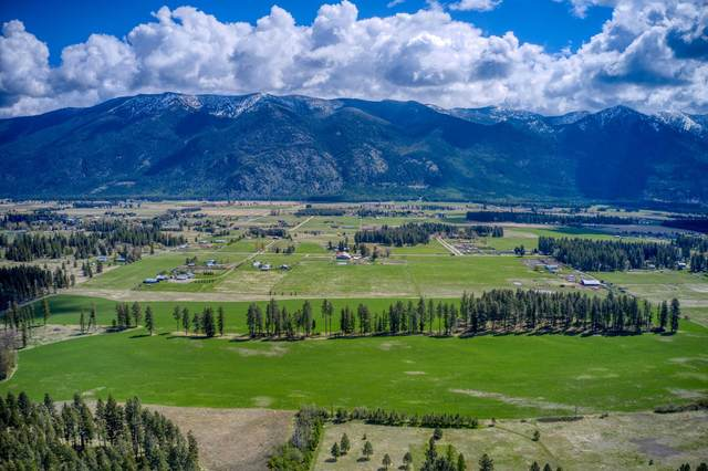 Columbia Falls, MT 59912 :: Peak Property Advisors