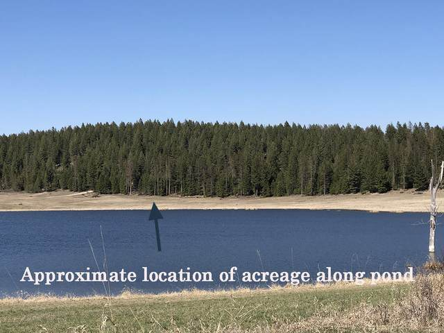 60 Wagon Wheel Road, Whitefish, MT 59937 (MLS #22112738) :: Andy O Realty Group