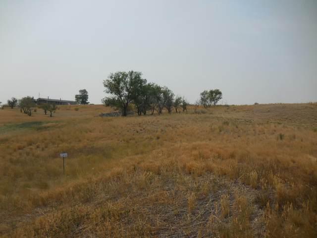 78 Wild Mint Court, Three Forks, MT 59752 (MLS #22112936) :: Montana Life Real Estate