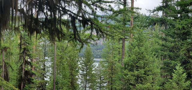 960 Lodgepole Drive, Marion, MT 59925 (MLS #22113297) :: Montana Life Real Estate