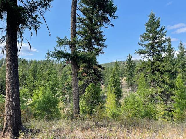 266 Kenny Road, Rexford, MT 59930 (MLS #22113318) :: Andy O Realty Group