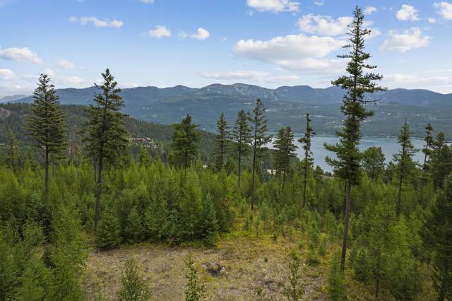 1037 Beaver Lake Trail, Whitefish, MT 59937 (MLS #22113412) :: Andy O Realty Group