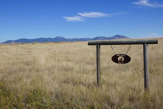 Tbd Peacemaker Ridge Road, Belt, MT 59412 (MLS #22113439) :: Montana Life Real Estate