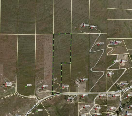 Nhn O'keefe Creek Boulevard, Missoula, MT 59808 (MLS #22113653) :: Peak Property Advisors