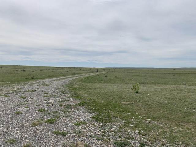 Nhn Mountain View Drive, Choteau, MT 59422 (MLS #22113869) :: Andy O Realty Group