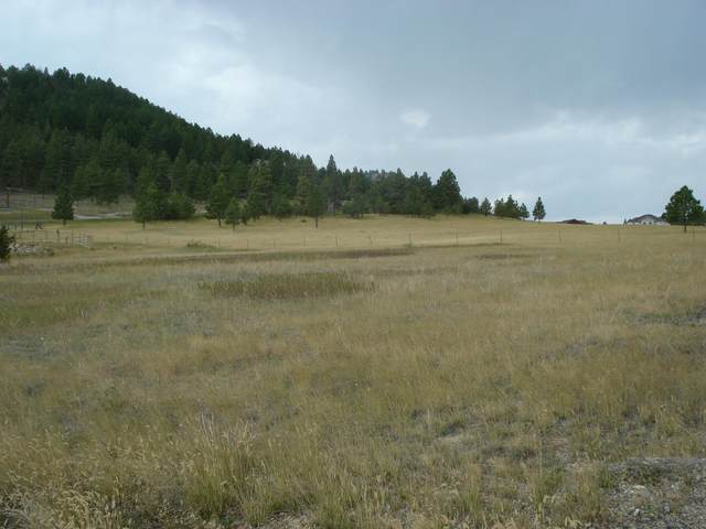 3 Jennings Court, Montana City, MT 59634 (MLS #22113871) :: Andy O Realty Group