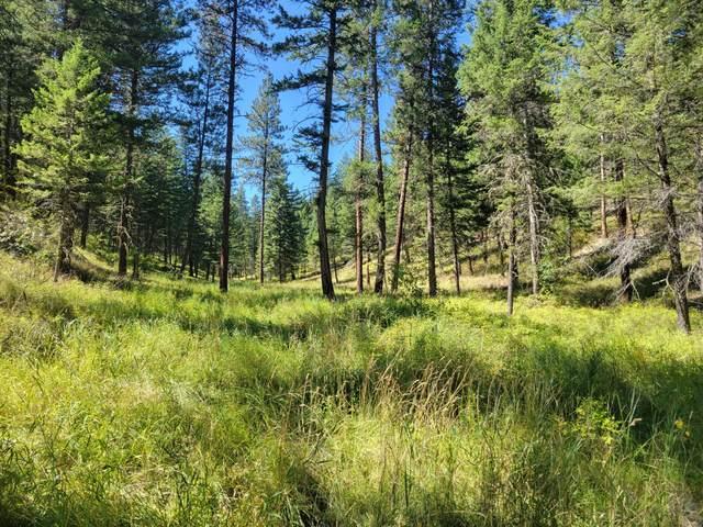 Lot 41 Jette Lake Lane, Polson, MT 59860 (MLS #22114082) :: Montana Life Real Estate