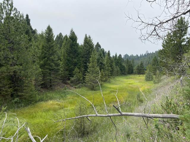Tbd Tower Road, Philipsburg, MT 59858 (MLS #22114196) :: Andy O Realty Group