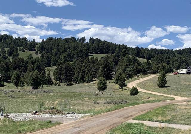 Tbd Ski Area Loop, Butte, MT 59701 (MLS #22114295) :: Peak Property Advisors