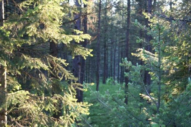 344 Kathy Lake Lane, Kalispell, MT 59901 (MLS #22114599) :: Peak Property Advisors