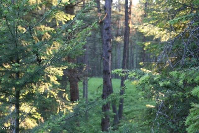 420 Lake Loop Drive, Kalispell, MT 59901 (MLS #22114602) :: Montana Life Real Estate
