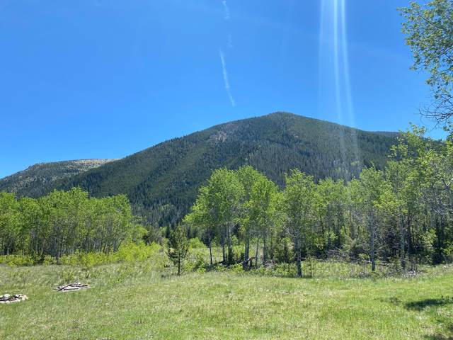 44 Two Meadows & 1470 Lime Spur Road, Anaconda, MT 59711 (MLS #22114627) :: Peak Property Advisors