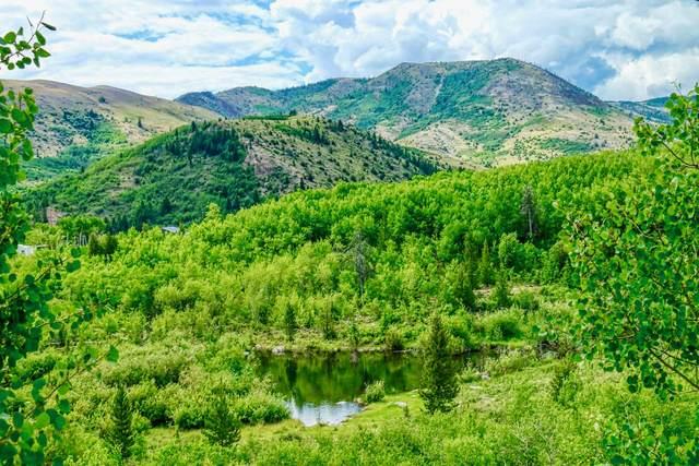 1063 Clear Creek Trail, Anaconda, MT 59711 (MLS #22114668) :: Peak Property Advisors