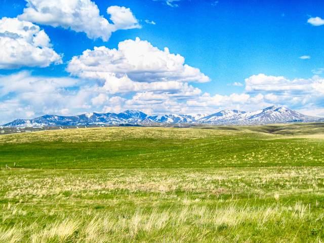 145 Peacemaker Ridge Road, Belt, MT 59412 (MLS #22114700) :: Dahlquist Realtors