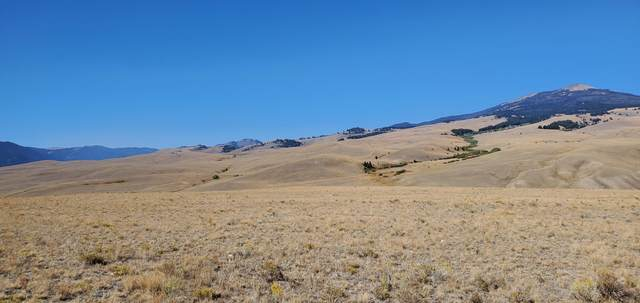 Tbd Elk View Minor Sub  Lot 5, Divide, MT 59727 (MLS #22115146) :: Andy O Realty Group