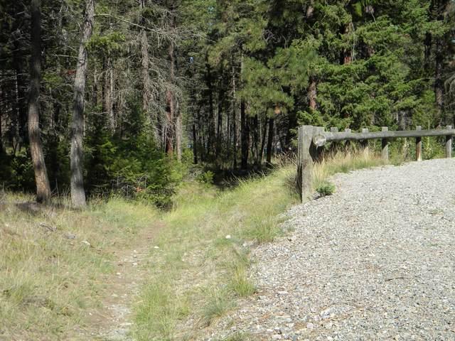 Nhn Hoodoo Loop, Eureka, MT 59917 (MLS #22115154) :: Andy O Realty Group