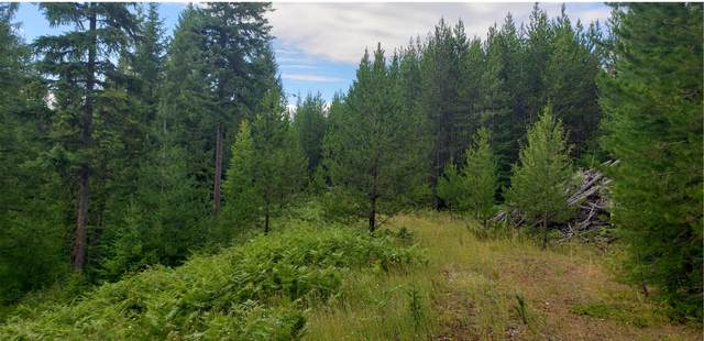 Lot 6a Porcupine Subdivision, Troy, MT 59935 (MLS #22115200) :: Montana Life Real Estate
