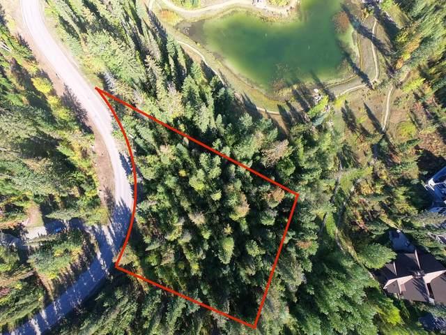 96 Woodland Star Circle, Whitefish, MT 59937 (MLS #22115223) :: Andy O Realty Group