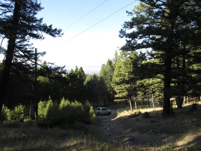 Tbd Arrowroot, Montana City, MT 59634 (MLS #22115249) :: Andy O Realty Group