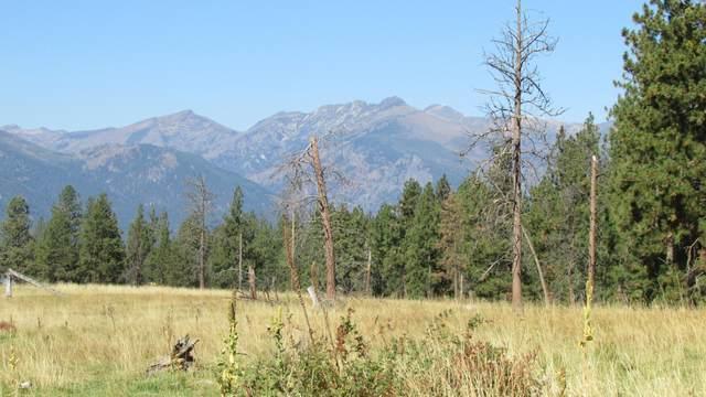000 Drift In Lane, Stevensville, MT 59870 (MLS #22115273) :: Montana Life Real Estate