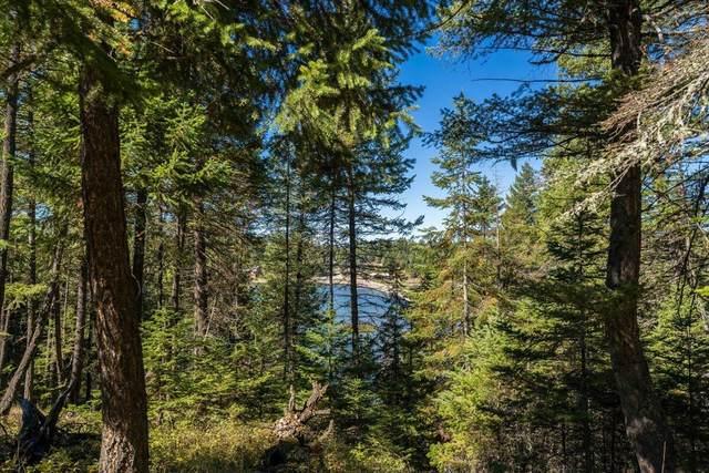 1370 Echo Lake Road, Bigfork, MT 59911 (MLS #22115280) :: Andy O Realty Group