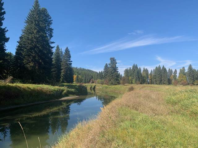 Nhn Hwy 93 W, Whitefish, MT 59937 (MLS #22115643) :: Montana Life Real Estate
