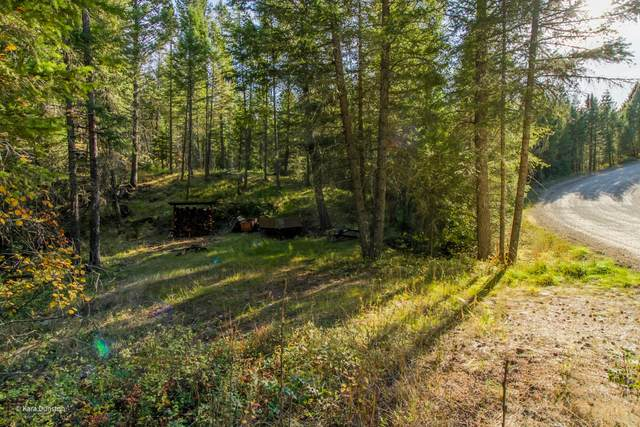 344 S Many Lakes Drive, Kalispell, MT 59901 (MLS #22115837) :: Andy O Realty Group