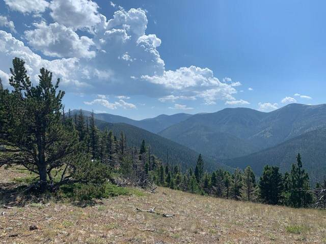 Tbd Bear Track Road, Wolf Creek, MT 59648 (MLS #22116035) :: Andy O Realty Group
