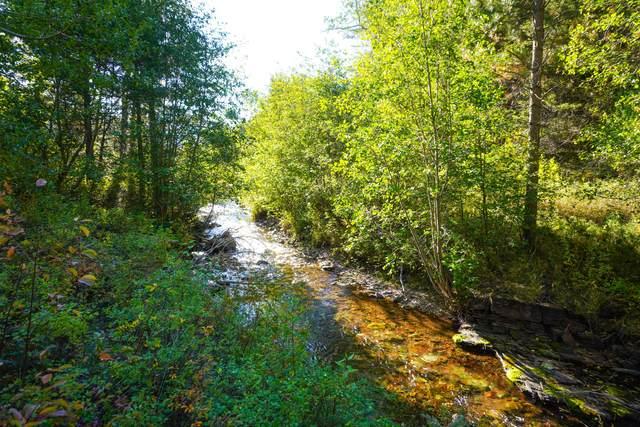 2565 Lyons Creek Road, Wolf Creek, MT 59648 (MLS #22116041) :: Andy O Realty Group